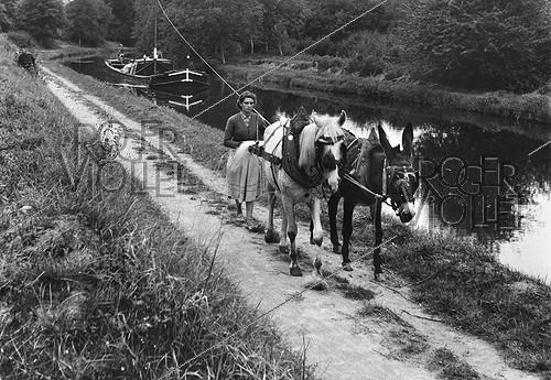 Roger-Viollet | 1048182 | Towpath on the bank of a canal. Centre, France, 1950. Photograph by Janine Niepce (1921-2007). | © Janine Niepce / Roger-Viollet