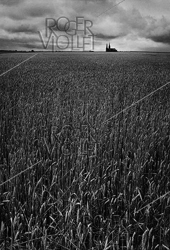 Roger-Viollet | 684860 | Wheatfield with a view of the Chartres cathedral (Beauce), 1961. Photograph by Janine Niepce (1921-2007). | © Janine Niepce / Roger-Viollet