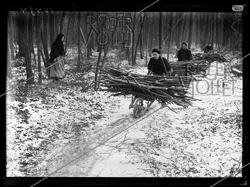 Roger-Viollet | 169724 | World War One. Women picking some deadwood in the forest during a coal shortage. L'Isle-Adam (France), early February 1917. Photograph published in the newspaper  Excelsior , on February 4, 1917. | © Excelsior - L'Equipe / Roger-Viollet
