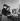 """Brigitte Bardot et Marc Allégret au moment du tournage du film """"Futures vedettes"""". France, 1955. © Gaston Paris / Roger-Viollet"""