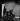 """""""Le Bel indifférent"""", pièce de Jean Cocteau. Edith Piaf. Paris, théâtre des Bouffes-Parisiens, avril 1940. © Studio Lipnitzki / Roger-Viollet"""