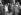 """Danielle Darrieux et Chenard, directeur de """"Radio-Ciné"""". 52ème semaine de """"Battement de Coeur"""". Paris, août 1941. © LAPI/Roger-Viollet"""