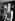 """Adam Ant (né en 1954), chanteur punk anglais et membre du groupe """"Adam and the Ants"""", avec sa manager Jordan (Pamela Rooke, née en 1955), lors de l'avant-première de """"La fièvre du samedi soir"""", film de John Badham. Londres (Angleterre), Leicester Square, 23 mars 1978. © PA Archive/Roger-Viollet"""