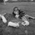 Line Renaud (née en 1928), chanteuse et actrice française, à la Jonchère. Rueil-Malmaison (Hauts-de-Seine), vers 1955. © Gaston Paris / Roger-Viollet