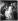 """Jacob Jordaens (1593-1678). """"Les quatre Evangélistes"""". Huile sur toile, 1625-1630. Paris, musée du Louvre. © Léopold Mercier / Roger-Viollet"""