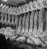 Devanture d'une boucherie. Paris, vers 1950. © Laure Albin Guillot/Roger-Viollet