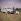Pique-nique. Alfa Roméo Giulietta Berlina 1900 (années 1960). France, années 1960.   © Roger-Viollet