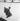 Guerre 1939-1945. Occupation. Destruction de statues pour récupérer les métaux. La statue d'Adolphe Thiers. Paris, 1941. © Pierre Jahan/Roger-Viollet