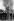 Grève des mineurs britanniques de 1984-1985. Confrontation entre policiers et mineurs lors d'un piquet de grève à la mine de charbon d'Orgreave (Angleterre), 18 juin 1984. © PA Archive/Roger-Viollet