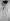 Maurice Ravel (1875-1937), compositeur français. Caricature de Jean Dulac.  © Albert Harlingue/Roger-Viollet