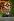 Nelson Mandela (Né en 1918), président d'Afrique du sud, lors d'un concert en son honneur. Londres (Angleterre), Wembley Stadium, 29 mars 2007. © PA Archive/Roger-Viollet