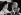 """Lucien Neuwirth (1924-2013), à l'origine de la loi autorisant la contraception orale en 1967, à la tribune du colloque international """"Donner la vie, la liberté des libertés"""". Unesco. Paris, octobre 1979. Photographie de Janine Niepce (1921-2007). © Janine Niepce/Roger-Viollet"""