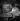 Maurice Druon (1918-2009), écrivain français, en 1950. © Studio Lipnitzki/Roger-Viollet