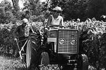 Wine grower driving her tractor. Charente (Poitou-Charentes), 1967.  Photograph by Janine Niepce (1921-2007). © Janine Niepce / Roger-Viollet