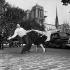 Henri Salvador (1917-2008), chanteur français, dansant le rock and roll. Paris, 20 septembre 1956.  © Roger-Viollet