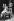 Karlheinz Stockhausen (1928-2007), chef d'orchestre et compositeur allemand, avec son fils Markus Pirol Stockhausen (né en 1957), trompettiste et compositeur allemand, 1982. © Chris Davies/TopFoto/Roger-Viollet