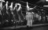 Boucher dans le pavillon de la viande des Halles. Paris (Ier arr.), 1964. Photograhie de Harold Chapman (né en 1927). © Harold Chapman/TopFoto/Roger-Viollet