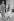 La princesse Grace de Monaco (1929-1982), avec sa fille Caroline (née en 1957) et son fils Albert (né en 1958). Paris, octobre 1959. © Bernard Lipnitzki / Roger-Viollet