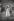 Jeune couple de danseurs au Chelsea Art Ball. Londres (Angleterre), 1959. © Jean Mounicq/Roger-Viollet