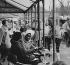 Couple at the table of a café terrace. Paris. Photograph by Janine Niepce (1921-2007). © Janine Niepce/Roger-Viollet