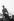 Prince Philip (né en 1921), duc d'Edimbourg, adressant une grimace aux juges lors des championnats du monde d'attelage à 4 chevaux. Ascot (Angleterre), hippodrome de Silver Ring, 13 août 1986. © PA Archive / Roger-Viollet
