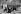 Banc et vendeur de gui près de l'Etoile. Paris, vers 1900.     © Neurdein/Roger-Viollet