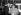 Duke Ellington (1899-1974), pianiste, compositeur et chef d'orchestre américain, avec son épouse, Ella Fitzgerald (1917-1996), chanteuse de jazz américaine. Aéroport de Londres (Angleterre), 12 février 1966. © PA Archive/Roger-Viollet