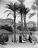 Le temple et les palmiers au bord du Nil. IIe de Philae (Egypte), vers 1900. Détail d'une vue stéréoscopique. © Léon et Lévy / Roger-Viollet