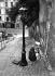 Peintre à Montmartre. Paris (XVIIIème arr.), vers 1940. © LAPI/Roger-Viollet