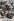 """""""Le coq gaulois"""". Caricature sur Emile Loubet (1838-1929), homme d'Etat français. Carte postale humoristique, après 1903. © Roger-Viollet"""