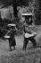 Fabrication du pain. Transport du pain. Corrèze (France), 1966. Photographie de Jean Marquis (né en 1926). © Jean Marquis/Roger-Viollet