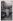 Portrait de Missak Manouchian (1906-1944), poète, journaliste, syndicaliste, résistant arménien, en vélo au jardin des Tuileries. Paris (Ier arr.). © Archives Manouchian / Roger-Viollet