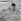 Bernadette Lafont (1938-2013), actrice française, au Festival de Cannes.  © Collection Roger-Viollet / Roger-Viollet