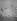 """Envol de spatules blanches dans le Burgenland (Autriche), 1er juin 1932. Photographie de Hugo Adolf Bernatzik (1896-1957), publiée dans le magazine """"Koralle"""". © Hugo Bernatzik/Ullstein Bild/Roger-Viollet"""