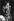 Mick Jagger (né en 1943), chanteur et musicien anglais, lors d'un concert des Rolling Stones. Newcastle (Angleterre), 1973. © Ian Dickson / TopFoto / Roger-Viollet