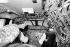 La reine Elisabeth II (née en 1926), observant les commandes de la cabine de pilotage du Concorde lors de son vol de retour de la Barbade pour son jubilé d'argent, 2 novembre 1977.  © Ron Bell/PA Archive/Roger-Viollet