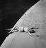 Modèle Tunmer. Maillot de bain. Paris, mai 1937.  © Boris Lipnitzki/Roger-Viollet