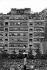 Guerre d'Algérie (1954-1962). Foule sur le forum lors de la venue du général de Gaulle (1890-1970). Alger (Algérie), 4 juin 1958. © Bernard Lipnitzki / Roger-Viollet