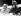 La princesse Elisabeth d'Angleterre (née en 1926) et son époux le prince Philip (né en 1921), assistant à un rodéo lors d'une tournée au Canada. Calgary (Alberta, Canada), 21 octobre 1951. © PA Archive / Roger-Viollet
