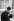 Prince Philip (né en 1921), duc d'Edimbourg, Président d'honneur de la Burma Star Association, association de vétérans, lors du défilé du dimanche du souvenir au cénotaphe. Londres (Angleterre), Horse Guards, 27 avril 1986. © PA Archive / Roger-Viollet