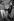 """Jacques Demy (1931-1990), réalisateur français, Michel Legrand (1932-2019), auteur-compositeur français, et Agnès Varda (née en 1928), réalisatrice française, lors du tournage des """"Demoiselles de Rochefort"""". France, 1966. Photographie de Georges Kelaïditès (1932-2015). © Georges Kelaïditès / Roger-Viollet"""