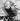 Guerre 1914-1918. Caricature de David Lloyd George, premier ministre britannique, en char d'assaut écrasant les forces allemandes, 1917. © Ullstein Bild/Roger-Viollet
