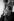 """Michel Legrand (1932-2019), musicien, compositeur, pianiste de jazz et chanteur français, pendant le tournage des """"Demoiselle de Rochefort"""", film de Jacques Demy. 1966. Photographie de Georges Kelaïditès (1932-2015). © Georges Kelaïditès / Roger-Viollet"""