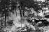 Pompiers luttant contre un incendie en forêt de Fontainebleau (Yvelines), 24 juillet 1911. © Maurice-Louis Branger/Roger-Viollet
