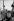 """Michel Legrand (1932-2019), chanteur et auteur-compositeur français, et Jacques Demy (1931-1990), réalisateur français, pendant le tournage du film de Jacques Demy """"Les Demoiselles de Rochefort"""", 1966. Photographie de Georges Kelaïditès (1932-2015). © Georges Kelaïditès / Roger-Viollet"""