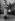 Danielle Darrieux et Pierre-Louis. Bois de Boulogne (Paris), février 1947. © LAPI/Roger-Viollet