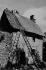 Toit de chaume. Corrèze (France), 1966. Photographie de Jean Marquis (né en 1926). © Jean Marquis/Roger-Viollet