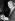 Martin Luther King (1929-1968), pasteur américain et leader pour les droits civiques, recevant le Prix Nobel de la Paix lors d'une cérémonie à l'université d'Oslo (Norvège), 12 décembre 1964. © TopFoto / Roger-Viollet