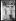 Guerre 1914-1918. Le traité de Versailles, 28 juin 1919 : la Paix avec l'Allemagne est signée. La foule au château de Versailles. © Excelsior - L'Equipe / Roger-Viollet