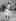 Madame Jackie Kennedy attendant, avec ses deux enfants John Junior et Caroline, l'arrivée de la reine à Runnymede, qui inaugura le monument aux morts des Kennedy, en offrant un arpent du territoire le plus historique d'Angleterre à la nation américaine, le 14 mai 1965. © TopFoto / Roger-Viollet